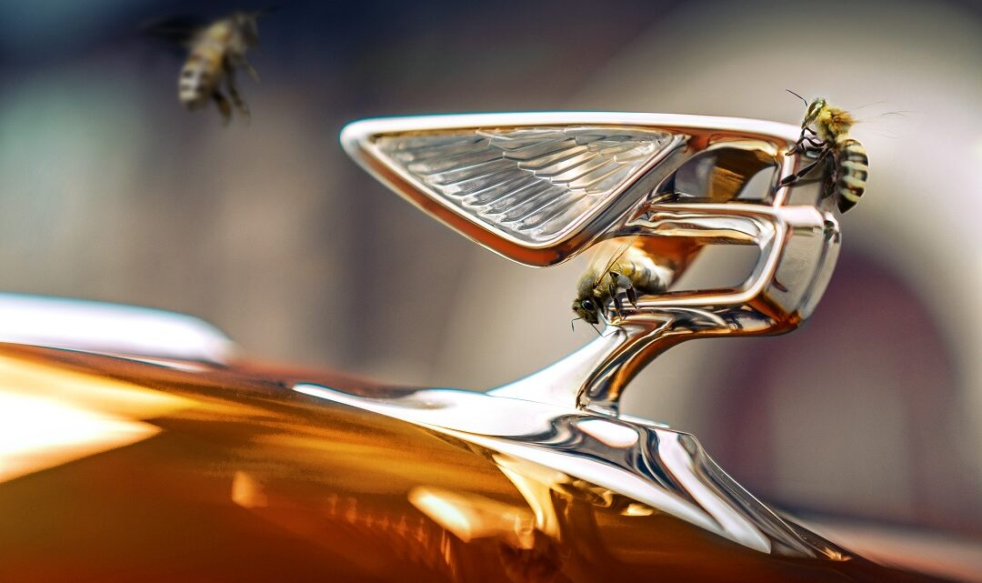 Bentley Motors Outlines Beyond 100 Strategy, Aims to Be End-to-End Carbon Neutral by 2030